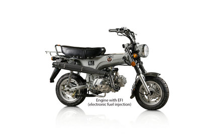 Skymax Club, EFI, 50cc, Euro4, Gray
