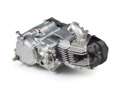 Motorblok, 150cc, handkoppeling, Daytona Anima FDX, 4-bak