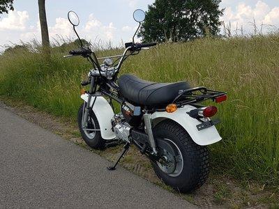 Skymax T-rex, 50cc