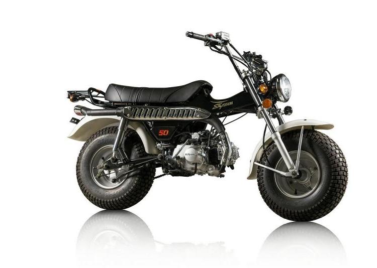 Skyteam-T-rex,-50cc